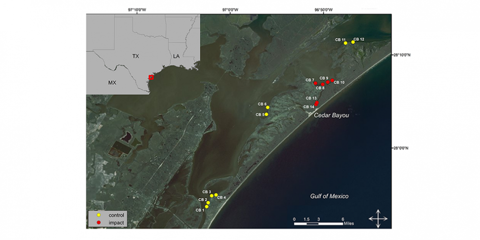 Map of the study area where samples have been collected since 2012